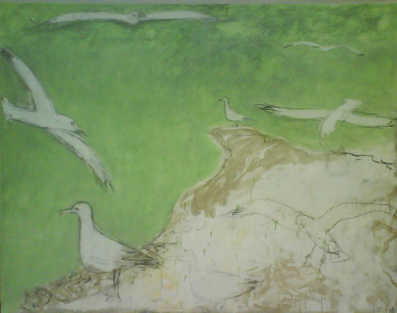 mar-gaviotas-verde